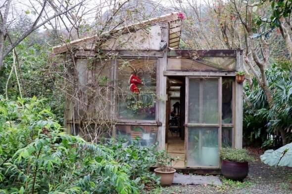 隱身陽明山「血觀音」場景木製玻璃屋秘境
