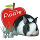 創作者 蘋果兔 的頭像