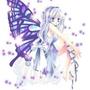 ☆筑紫蝶★