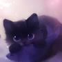 blackcat0901