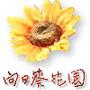 風華絕代向日葵