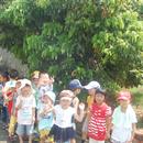 新山國小幼兒園 圖像