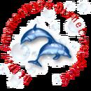 小海豚 圖像