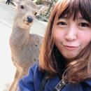 Minako 圖像
