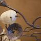 創作者 Pati Tree 的頭像