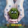 J.C.小編