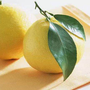 pomelo柚子