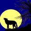 十五夜下的狼嚎