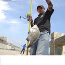 投釣者 圖像