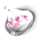 Lotus Rain 圖像