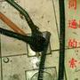 yaoshine